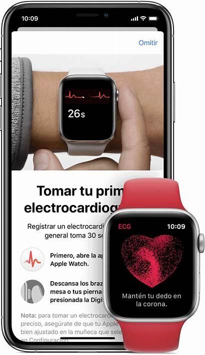 Apple Ecg Ekg Electrocardiograma App Recurso Realizar