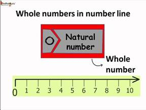 What Is Whole Numbers in Math