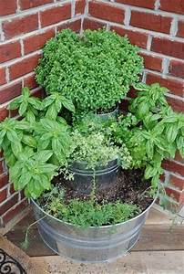 Container herb garden home outdoors pinterest for Container herb garden