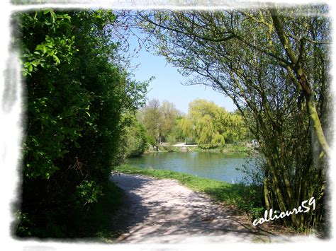 si鑒e social villeneuve d ascq photo à villeneuve d 39 ascq 59491 lac du hé villeneuve d 39 ascq 131936 communes com