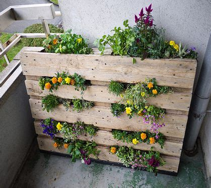 pallet garden  instructions pallet projects