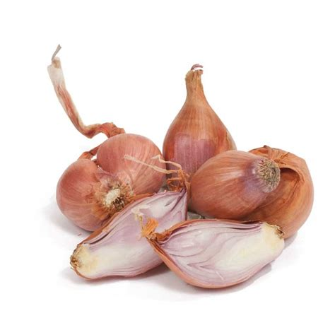 what are shallots shallots eschallots fruit and vegetables melbourne