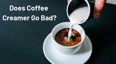 A break down of coffee creamer ingredients. Does Coffee Creamer Go Bad? - Things You Should Know About it