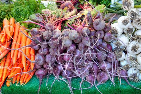 comment cuisiner du radis noir légumes anciens d hiver comment les préparer le radis