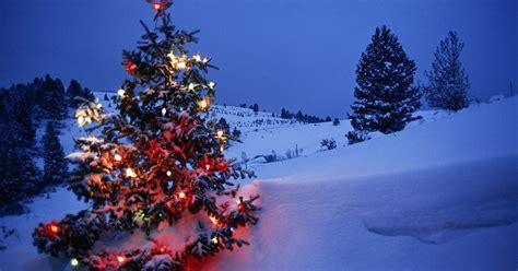 christmas quiz        festive