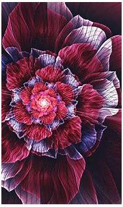 Abstract Flower HD Wallpaper   Background Image ...