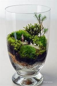 Bonsai Im Glas : 25 ~ Eleganceandgraceweddings.com Haus und Dekorationen