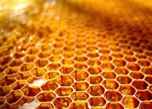 Honeycomb Recipes — Dishmaps  Honeycomb