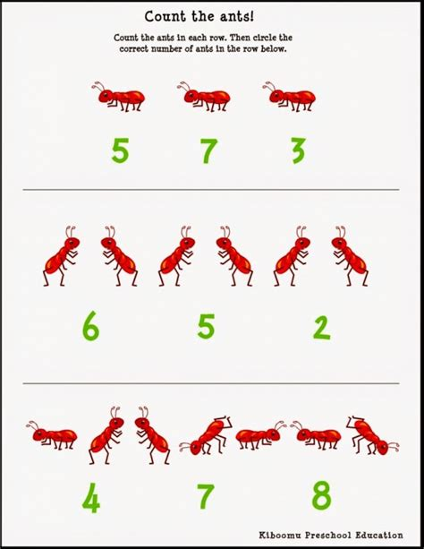 insect worksheets for preschool kootation