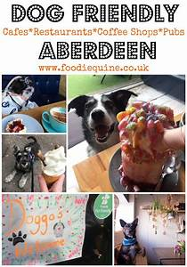dog friendly places to eat in aberdeen foodie quine With dog friendly stores near me