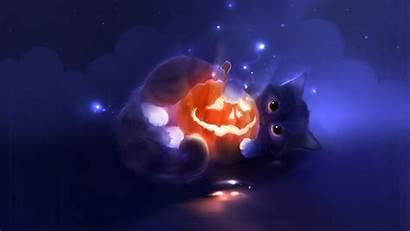 Halloween Cat Pumpkin Cats Adorable Wallpapers Desktop