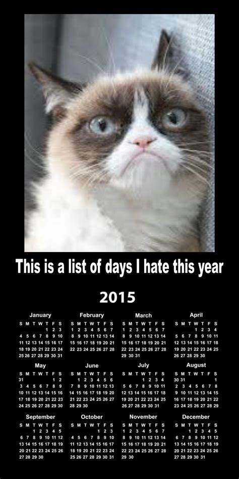 The Worlds Grumpiest Cat 40 Funniest Grumpy Cat Memes