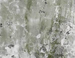 Weißer Schimmel An Der Wand : wei er schimmel wo kommt er her und wie wird man ihn los ~ Michelbontemps.com Haus und Dekorationen