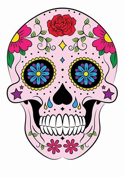 Skull Sugar Mexican Behance