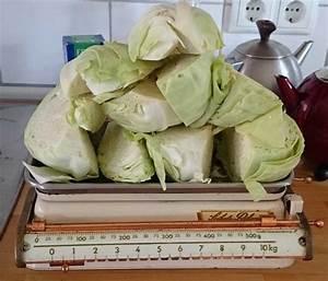 Sauerkraut In Gläser : rezept sauerkraut selbst gemacht solawi dahlum ~ Whattoseeinmadrid.com Haus und Dekorationen