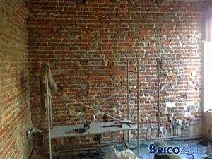 Mur En Brique Intérieur : r novation mur int rieur en brique friable ~ Melissatoandfro.com Idées de Décoration