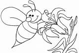 Bee Coloring Queen Honey Pages Getcolorings Printable Colorings Print sketch template