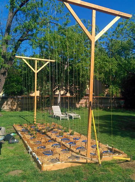 Hops Trellis Design by Hop Garden Build Hop Yard Garden Design Hops