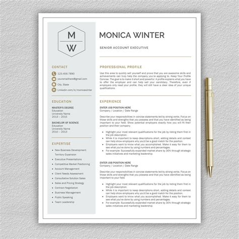 professional  modern resume template  word