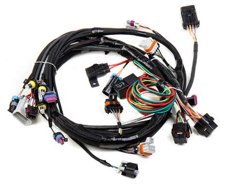 Ls1 Wiring Harnes by Holley 558 102 Wiring Harness Ls1 Ls6 Ebay