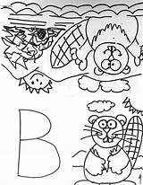 Coloring Colouring sketch template