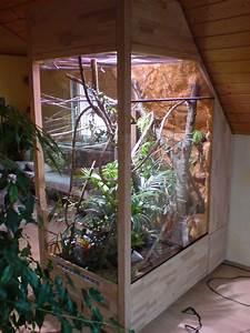 Pflanzen Für Terrarium : baudokumentation terrarium f r lilly jemencham leon dght foren ~ Orissabook.com Haus und Dekorationen