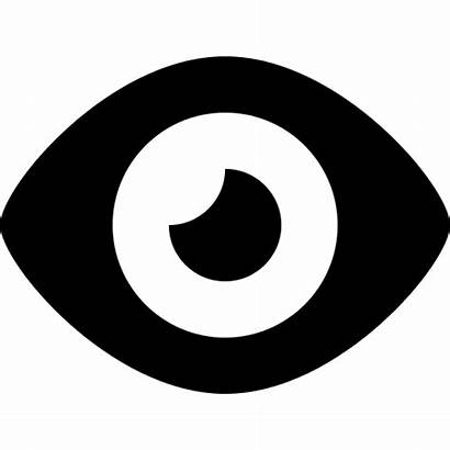 Icon Eye Vector Eyeball Icons Supervision Monitoring