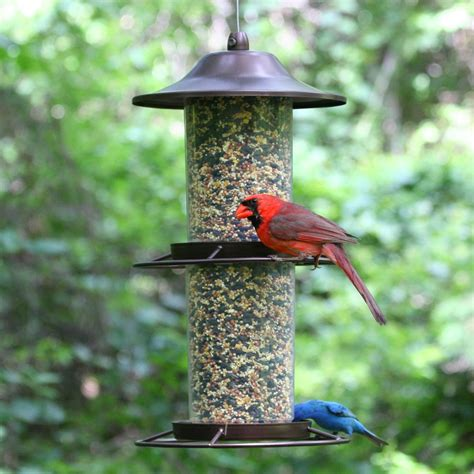 bird seed feeders pet 325s panorama bird feeder