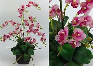Künstliche Orchideen Im Topf : orchideen arrangement rosa pink im schwarzen dekotopf ja kunstpflanzen 4260355155848 ebay ~ Watch28wear.com Haus und Dekorationen