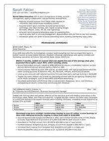 of a professional resume professional resume sles search results calendar 2015