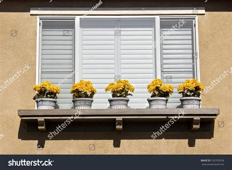 Window Ledge Outside by Five Flower Pots Outside On A Window Ledge Stock Photo