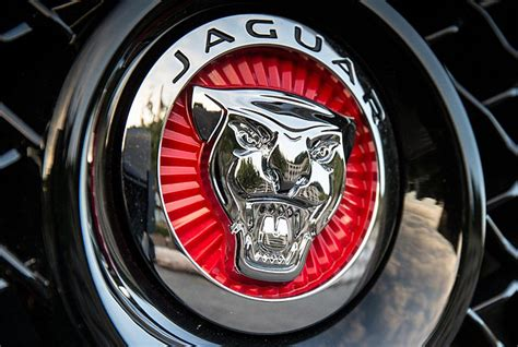 Maybe you would like to learn more about one of these? Jaguar Logo, HD 1080p, Png, Meaning, Information | Carlogos.org