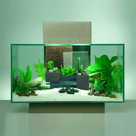 pin fluval edge 2 12 gallon size new aquarium by hagen aquascape on