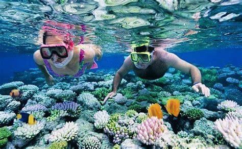 scuba snorking andaman