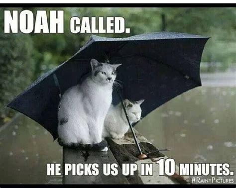 Rain Meme - pinterest the world s catalog of ideas