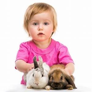 Haustiere Für Kinder : haustiere kaufen und sich positive momente im leben sichern ~ Orissabook.com Haus und Dekorationen