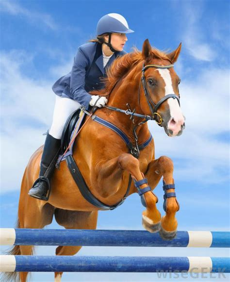 What is Show Jumping? (with picture)