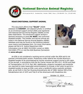 get an emotional support animal to help with anxiety and With esa cat letter
