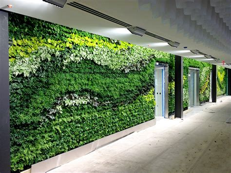 Gsky Installs Massive Green Wall In Atlantaarea Office Of