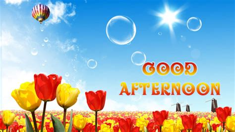 funny good afternoon messages   weneedfun
