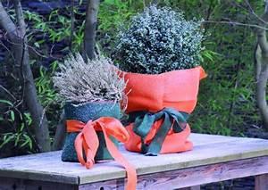 Winterschutz Für Kübelpflanzen : pflanzen winterschutz jutesack 60x80cm ~ Avissmed.com Haus und Dekorationen