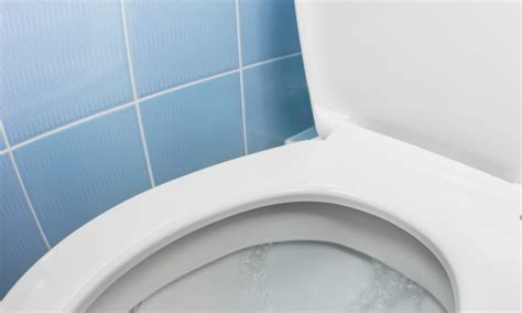 4 Easytofix Solutions For A Weak Flushing Toilet Smart