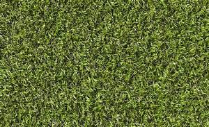 Gazon Synthétique Saint Maclou : avis pelouse synthtique great gazon synthtique agrandir ~ Dailycaller-alerts.com Idées de Décoration