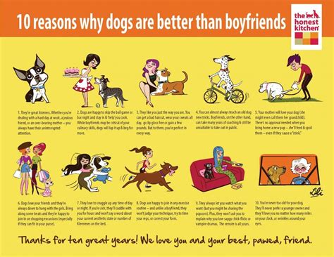 dogs better than boyfriends why reasons lili chin awesome drawings dog cats infographics thehonestkitchen boyfriend puppy friends friend pet infographic