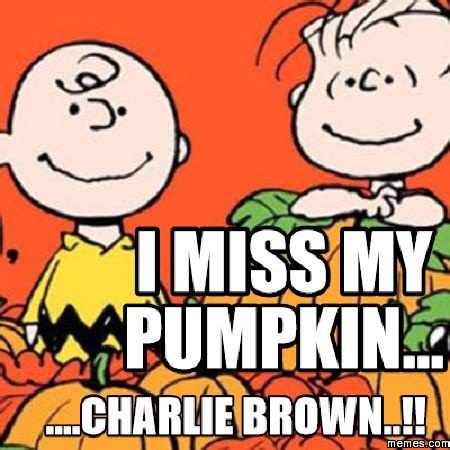 Charlie Brown Memes - i miss my pumpkin charlie brown memes com