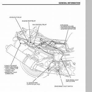 Cbr954rr Rebuild - Wiring Harness