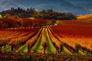 road trip 10 must see spots through sonoma and napa valley where to go when article by 10best