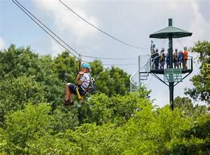 Is a Zipline the Right Adventure for Your Family? - MiniTime