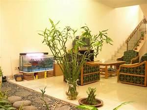 Feng Shui Garten Pflanzen : feng shui pflanzen schlafzimmer pflanzen feng shui bestes haus feng shui pflanzen f r harmonie ~ Bigdaddyawards.com Haus und Dekorationen