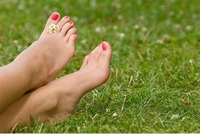 Grass Barefoot Feet Foot Cotton Bare Sun